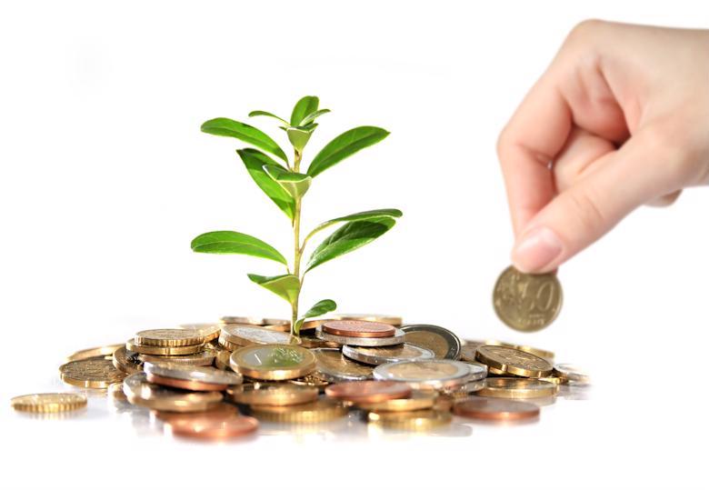 Оценка предприятия в целях инвестирования